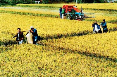 1. Реформа аграрного сектора