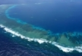 Китай планирует открыть гигантскую рыбную ферму вблизи о. Наньша